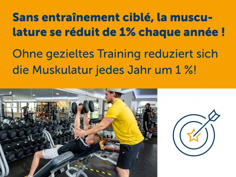 Ohne gezieltes Training reduziert sich die Muskulatur jedes Jahr um 1 %!