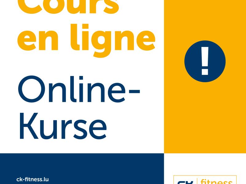 Video - Online-Kursen