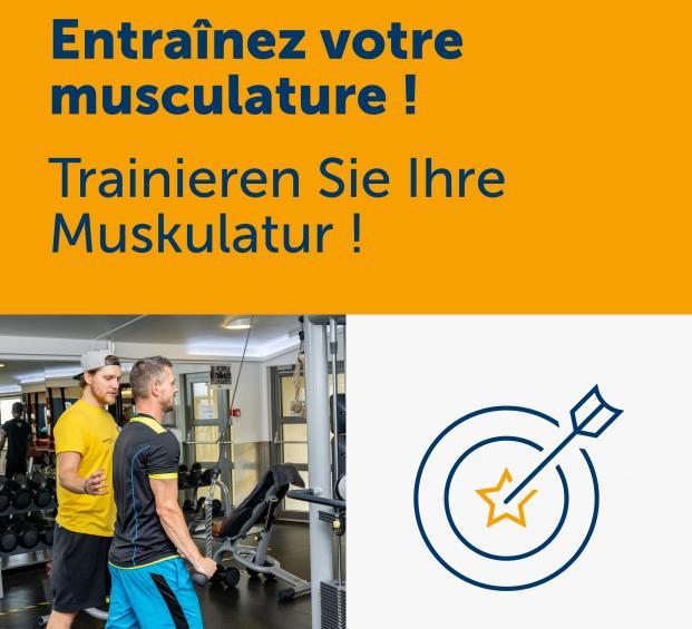 Sans entraînement ciblé la musculature se réduit de 1 % chaque année.